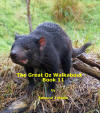 The Great OZ Walkabout Book 11
